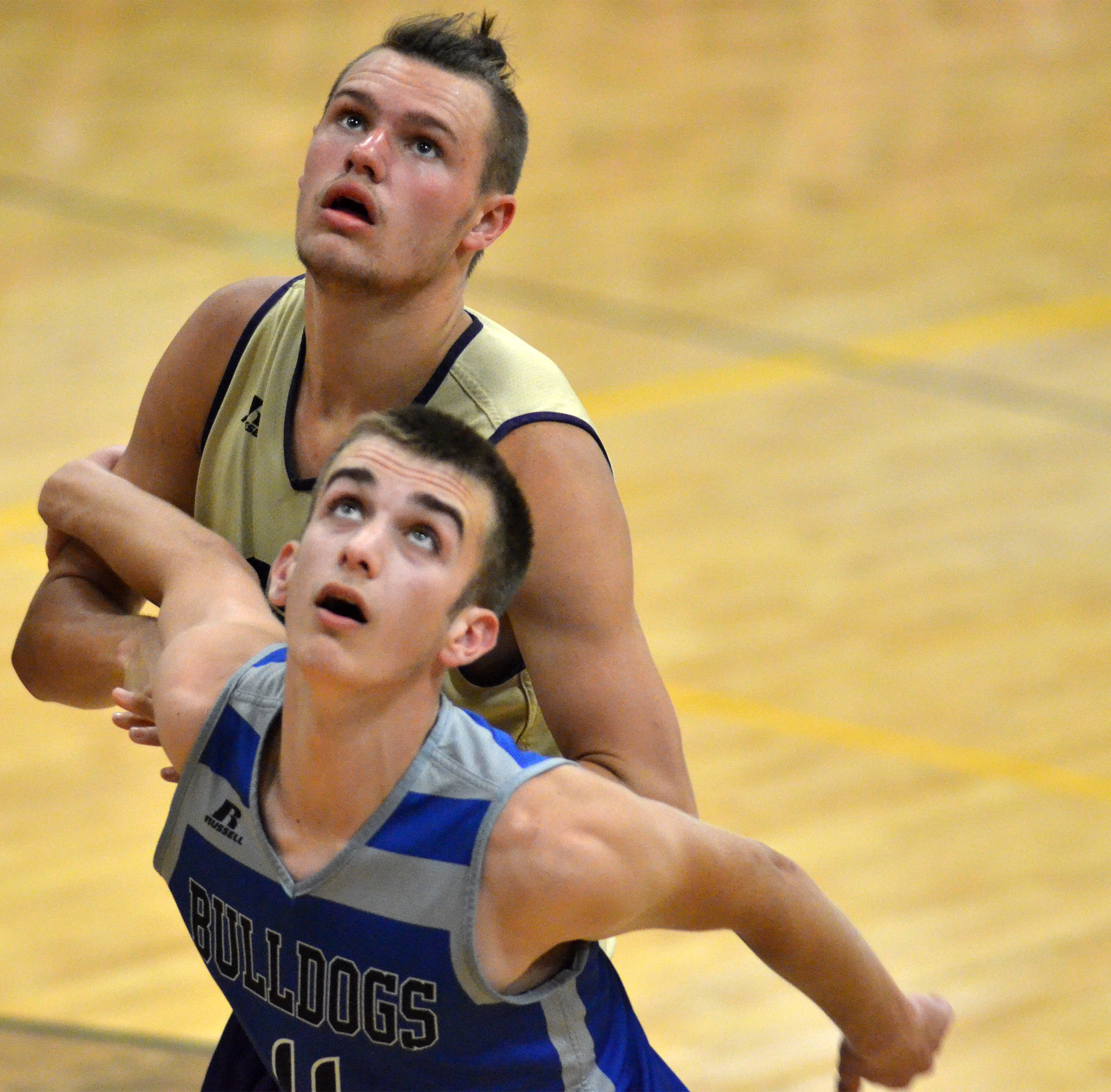 CHS senior Logan Cole looks for a rebound.