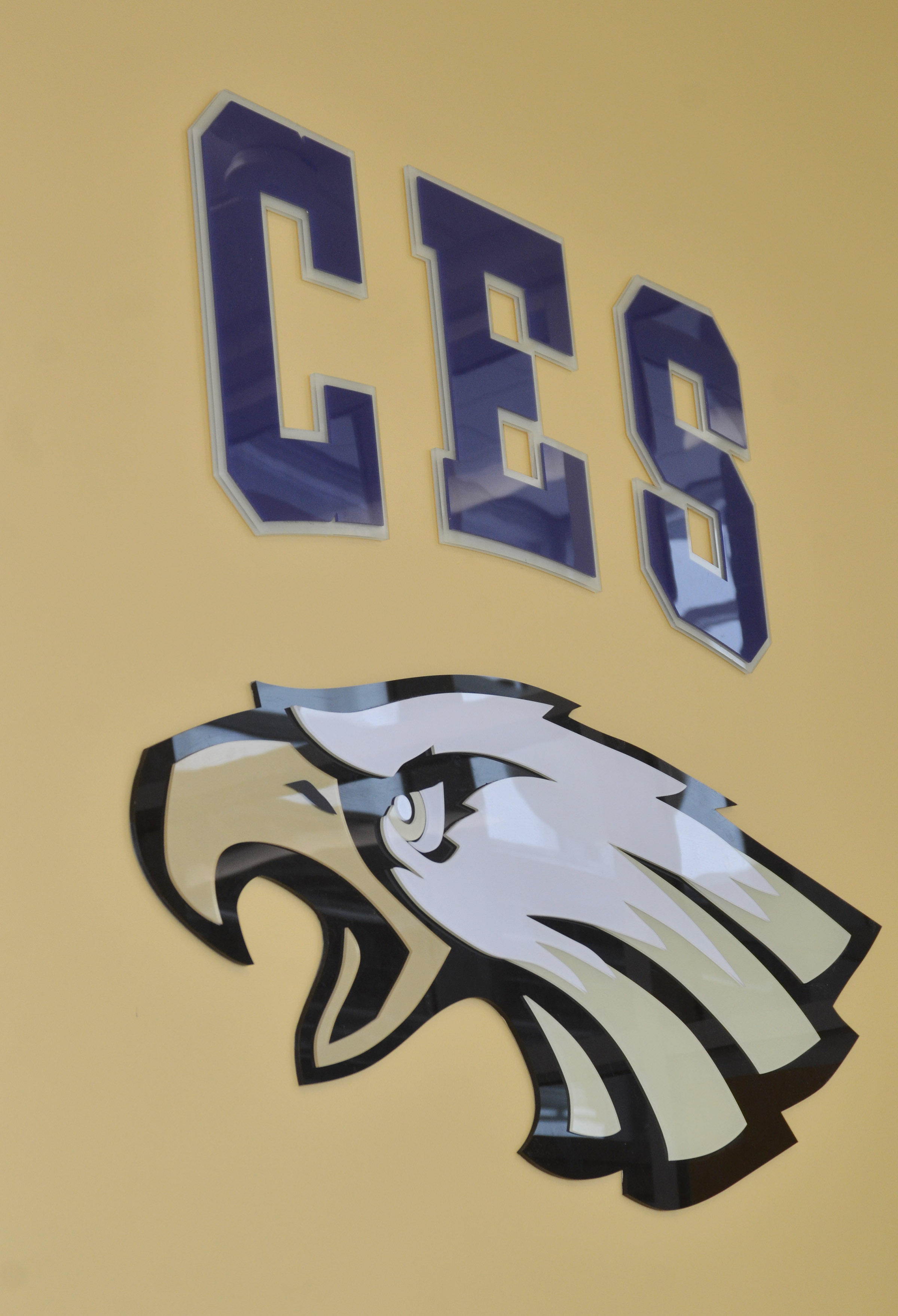 The CES letters and eagle were recently hung in the new main office.