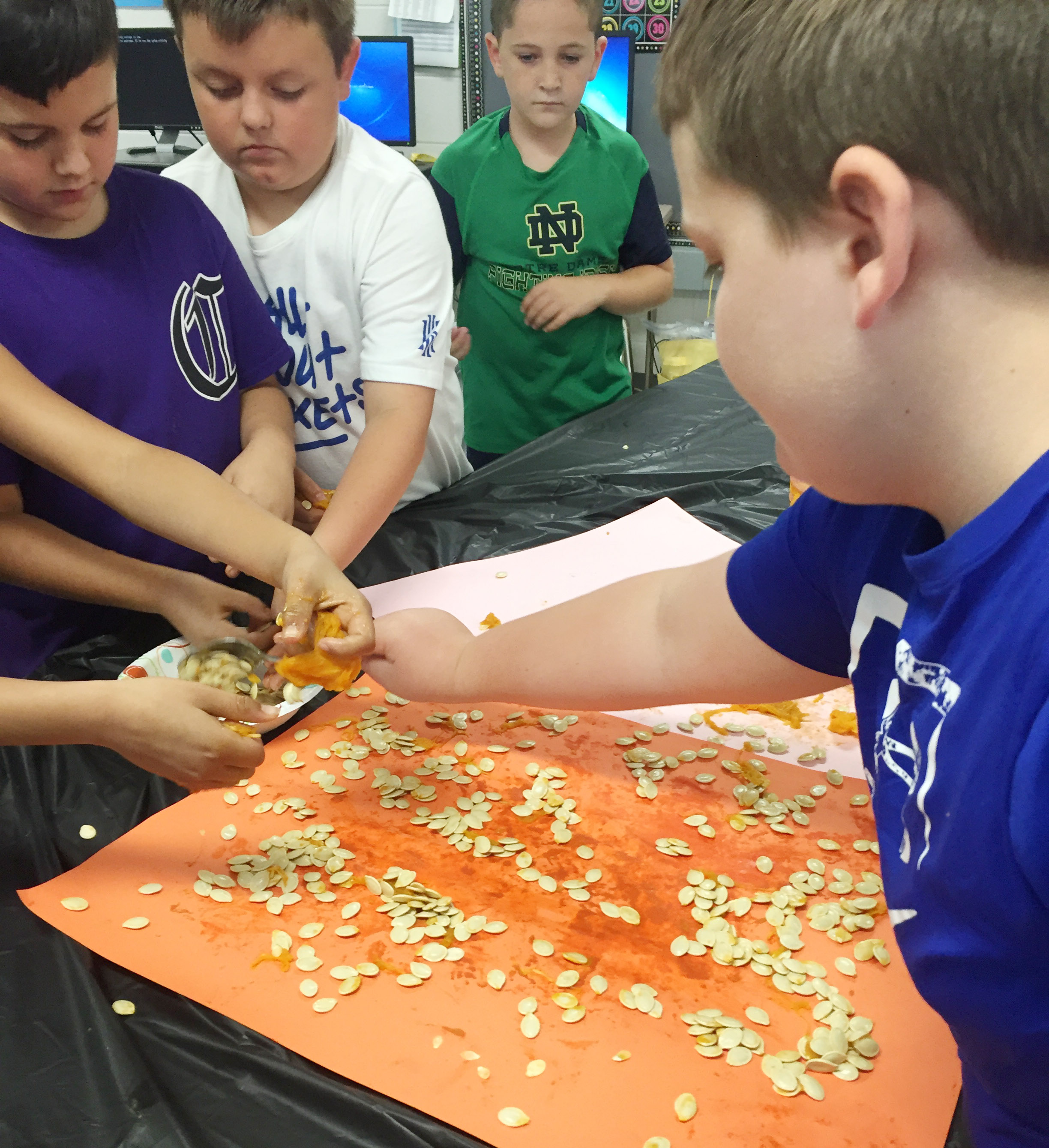 CES third-graders sort their pumpkin seeds. From left are Damien Clark, Hayden Maupin and Luke Adkins, and, in front, Braxton Tucker.