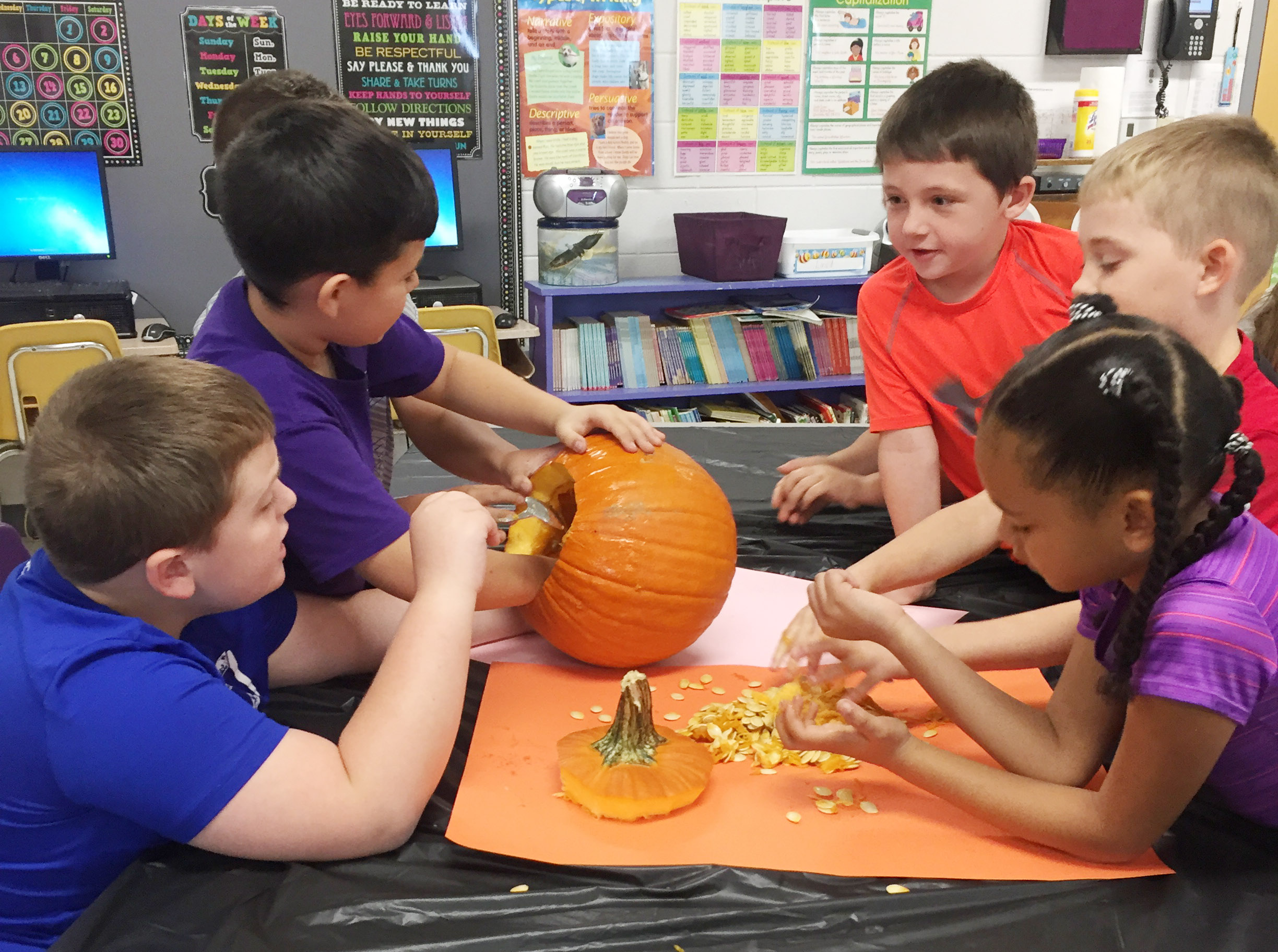 CES third-grader Damien Clark scoops seeds out his group's pumpkin.