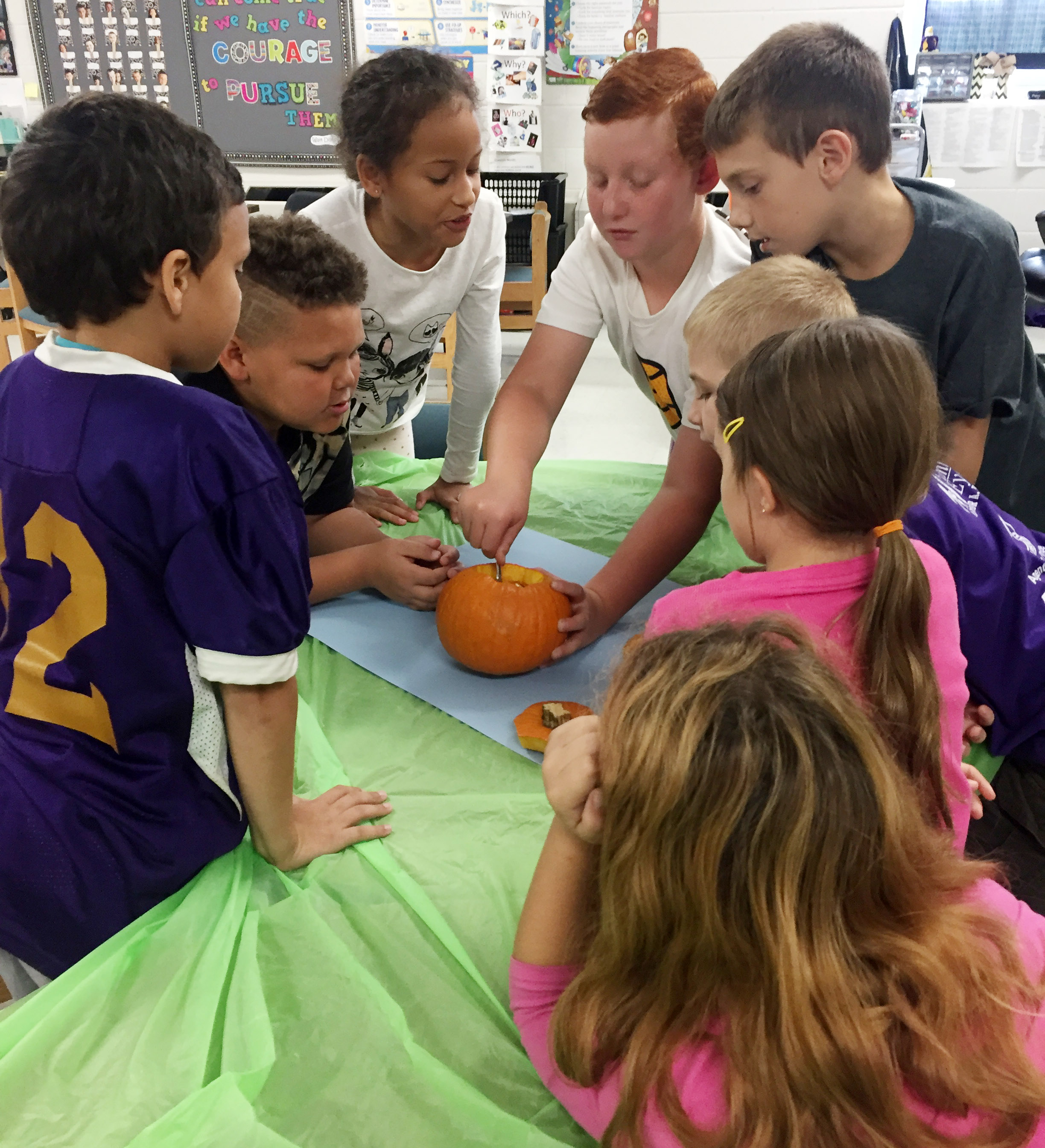CES third-grader Reece Swafford scoops seeds out of his group's pumpkin.