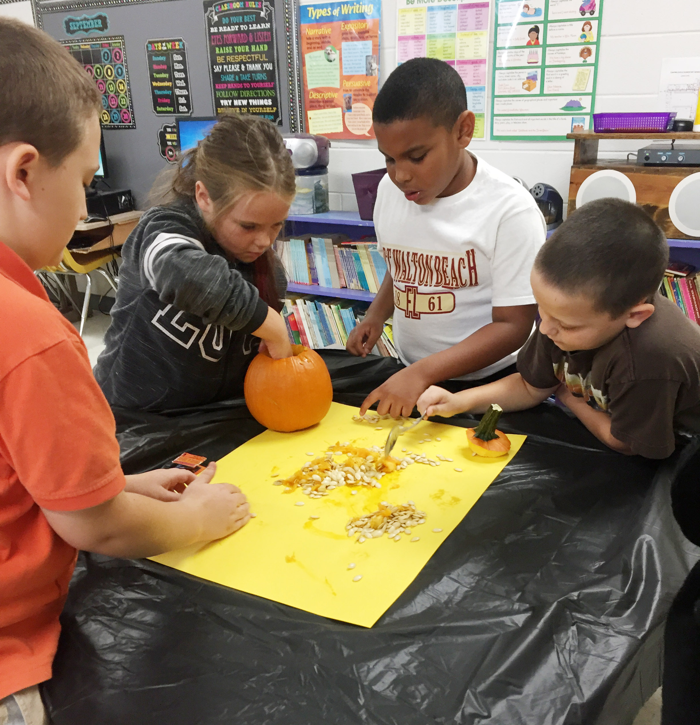 CES third-grader Cayleigh Underwood scoops seeds out of her group's pumpkin.