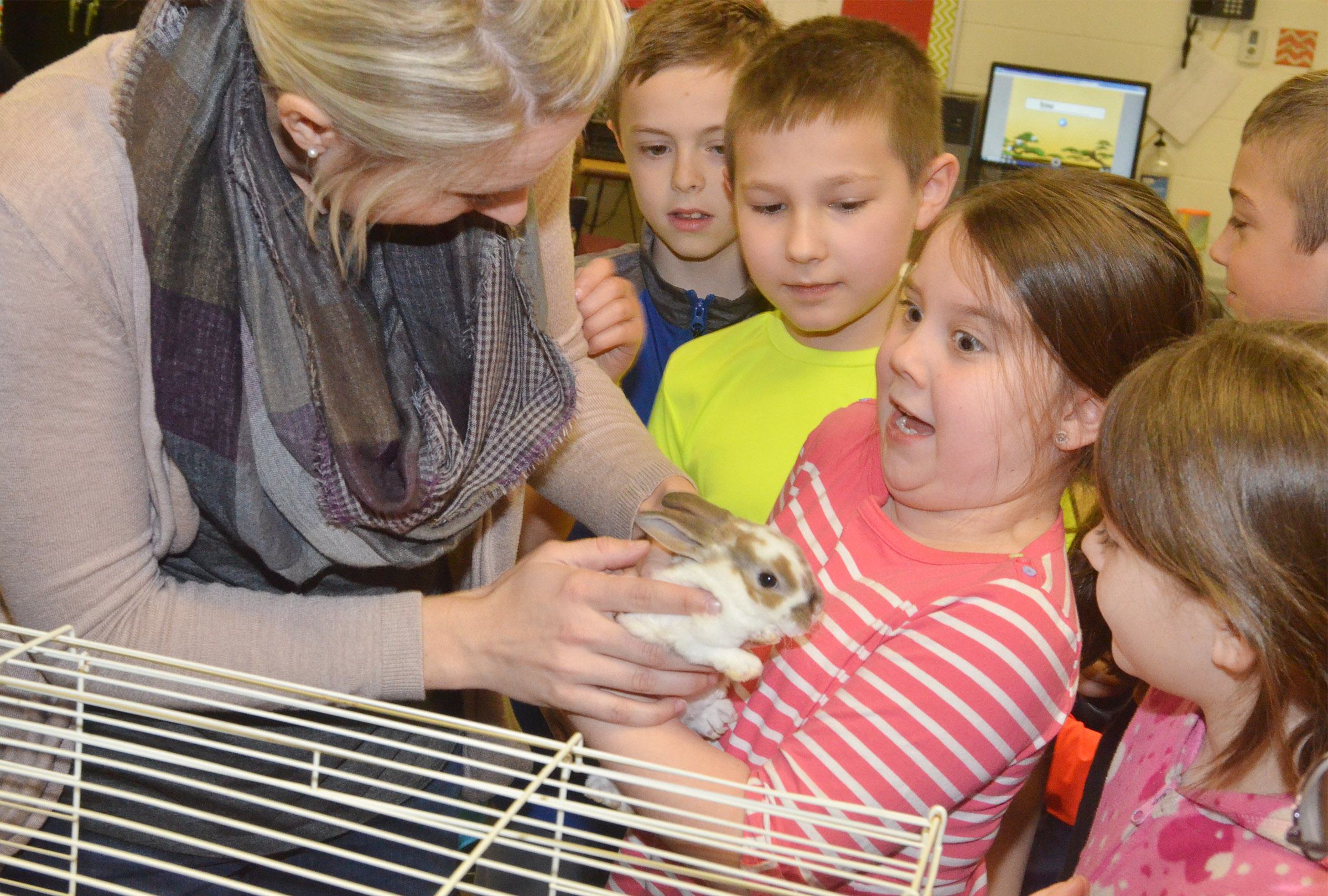 CES third-grader Maylee Wilds reacts as she holds one of the class's rabbits.