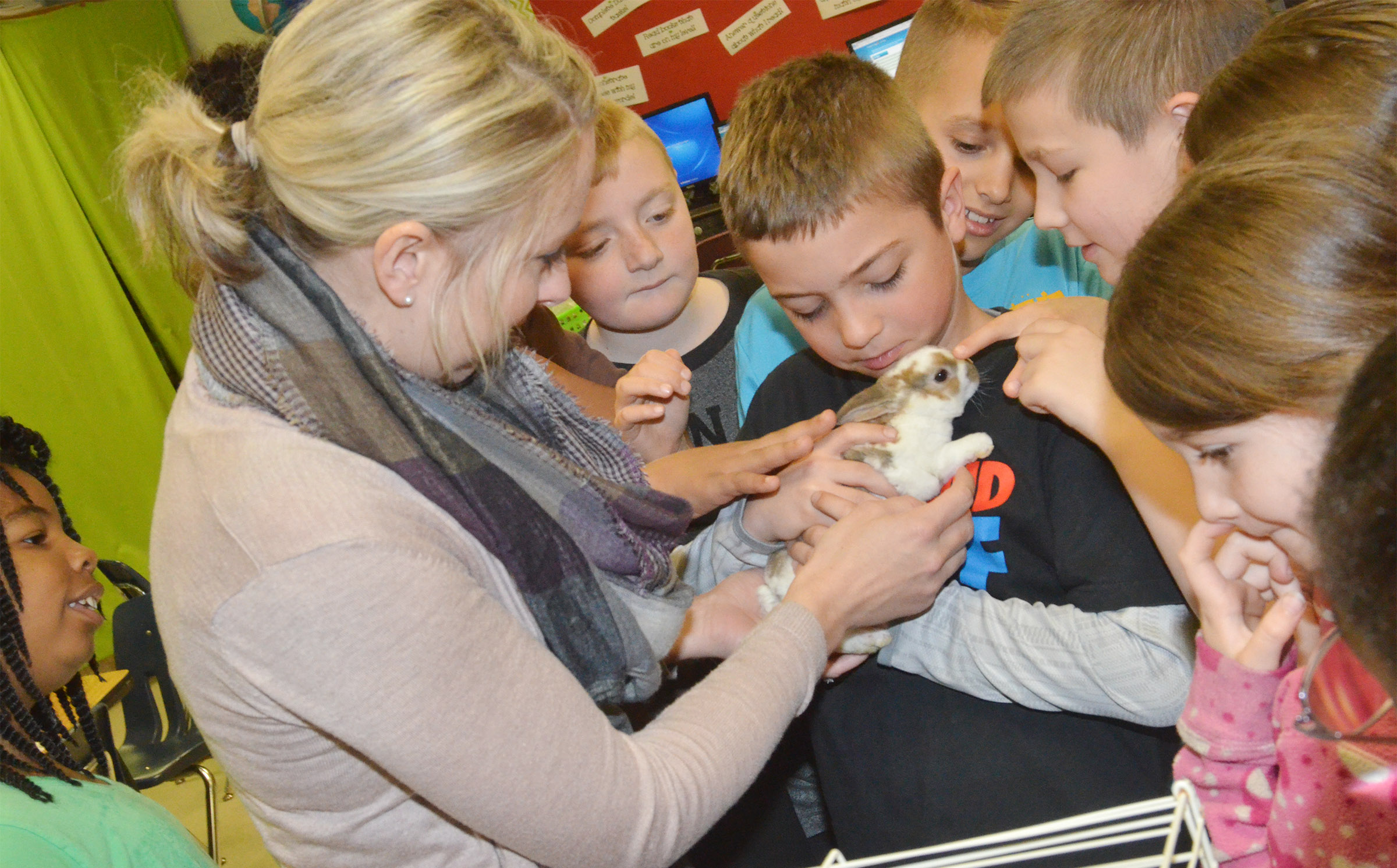CES third-grader Carson Mills holds one of the class's rabbits.