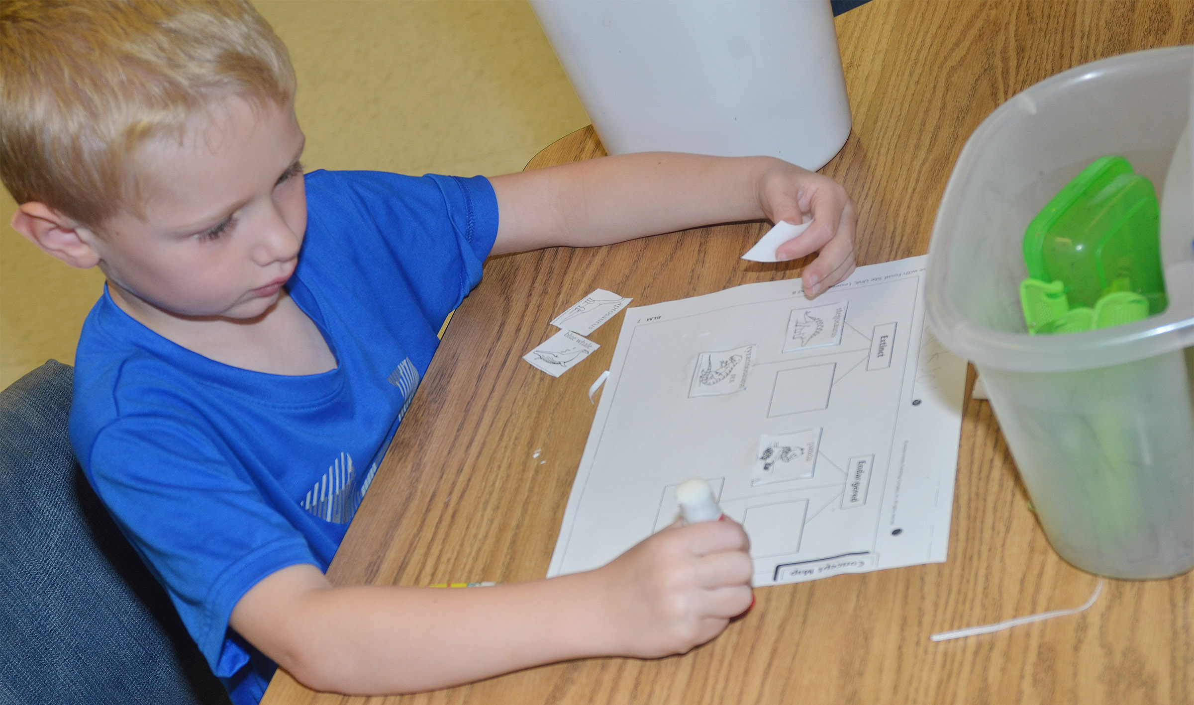 CES kindergartener Jackson Wright labels animals as extinct or endangered.