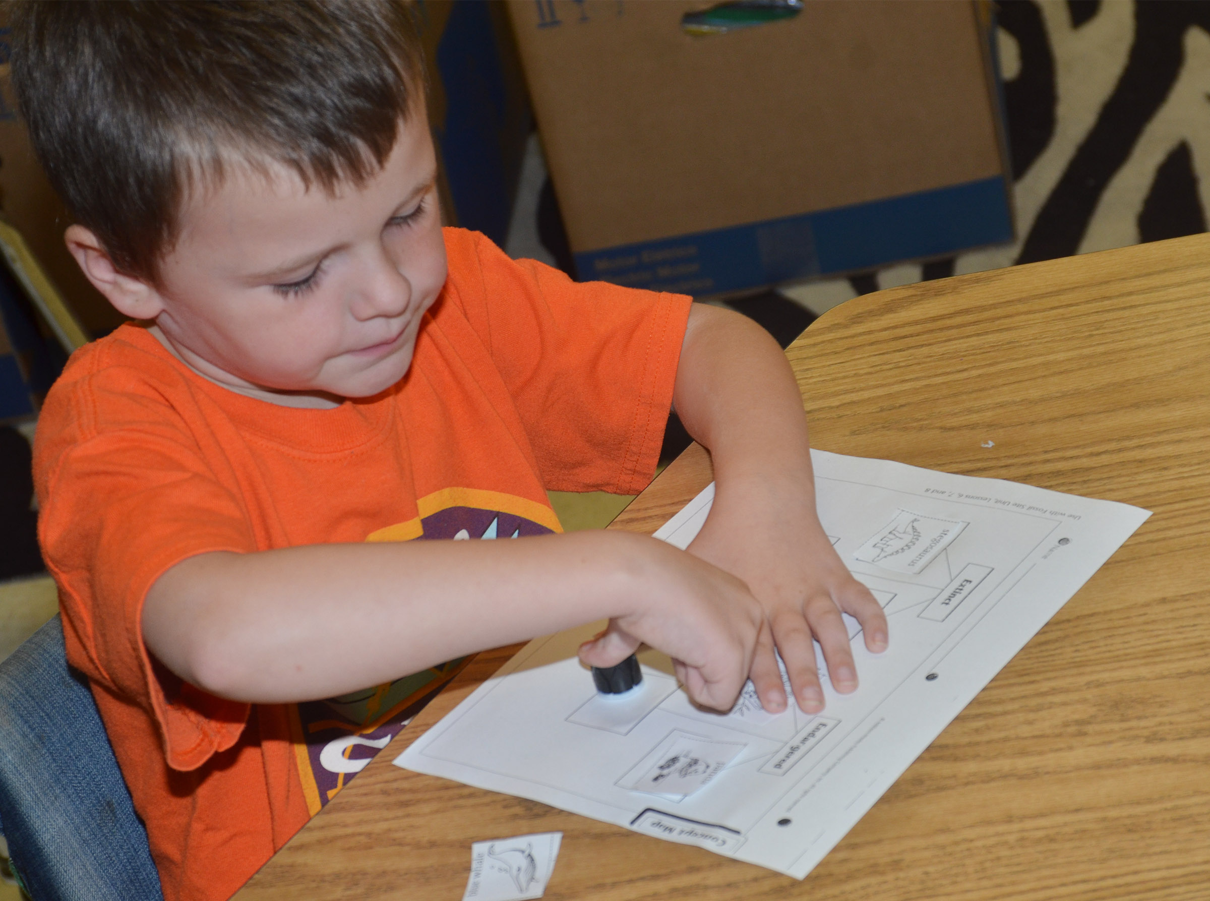 CES kindergartener Mason Dowell labels animals as extinct or endangered.