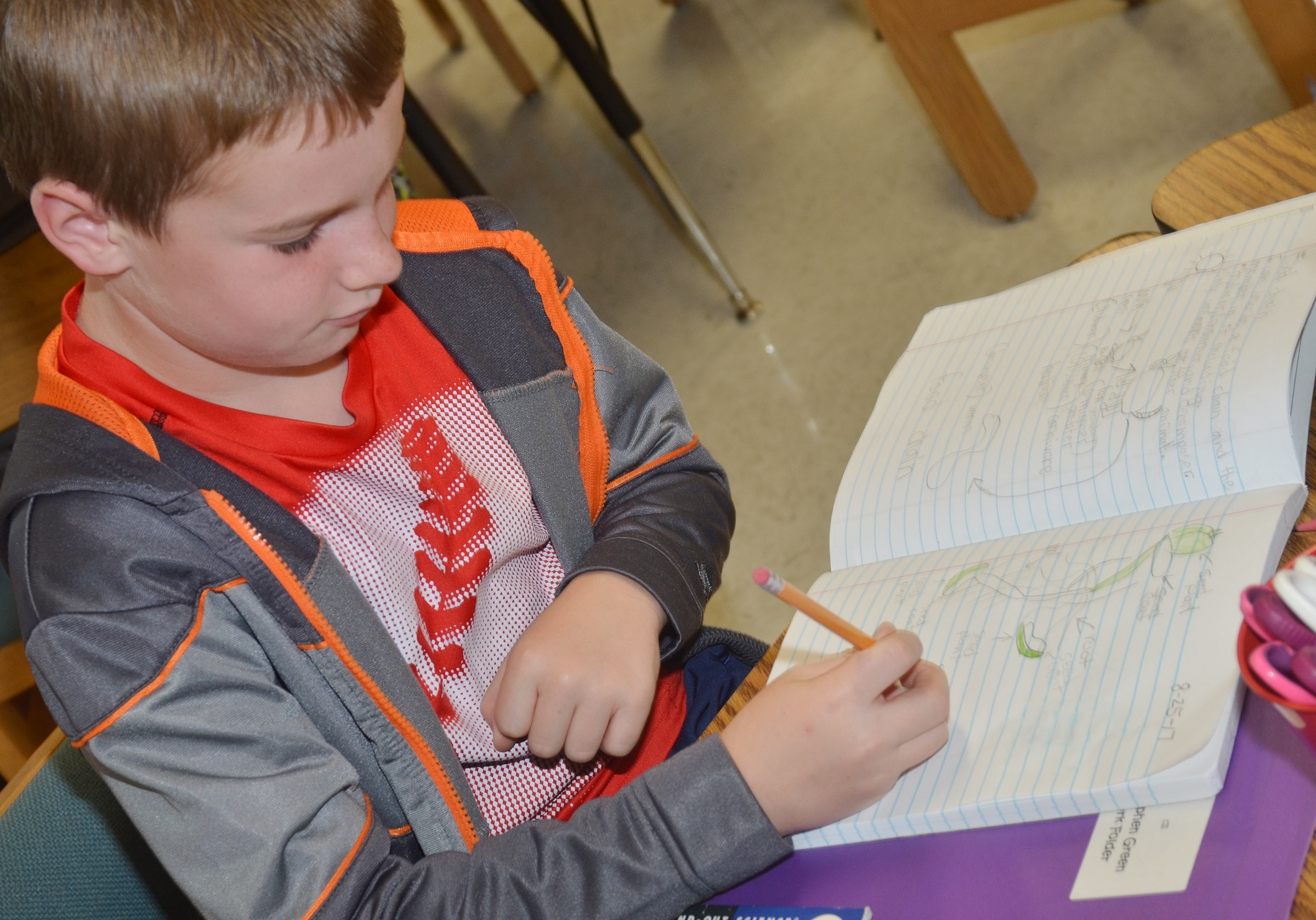 CES third-grader Stephen Green records the progress of his lima bean plant in his journal.