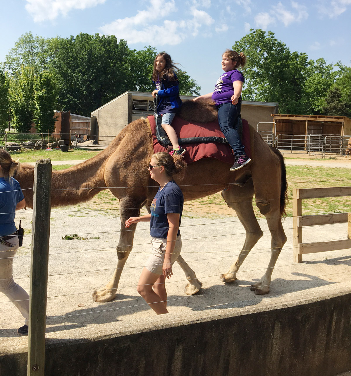 CES third-graders Zehavah Negron, at left, and Madison Philpott ride a camel.
