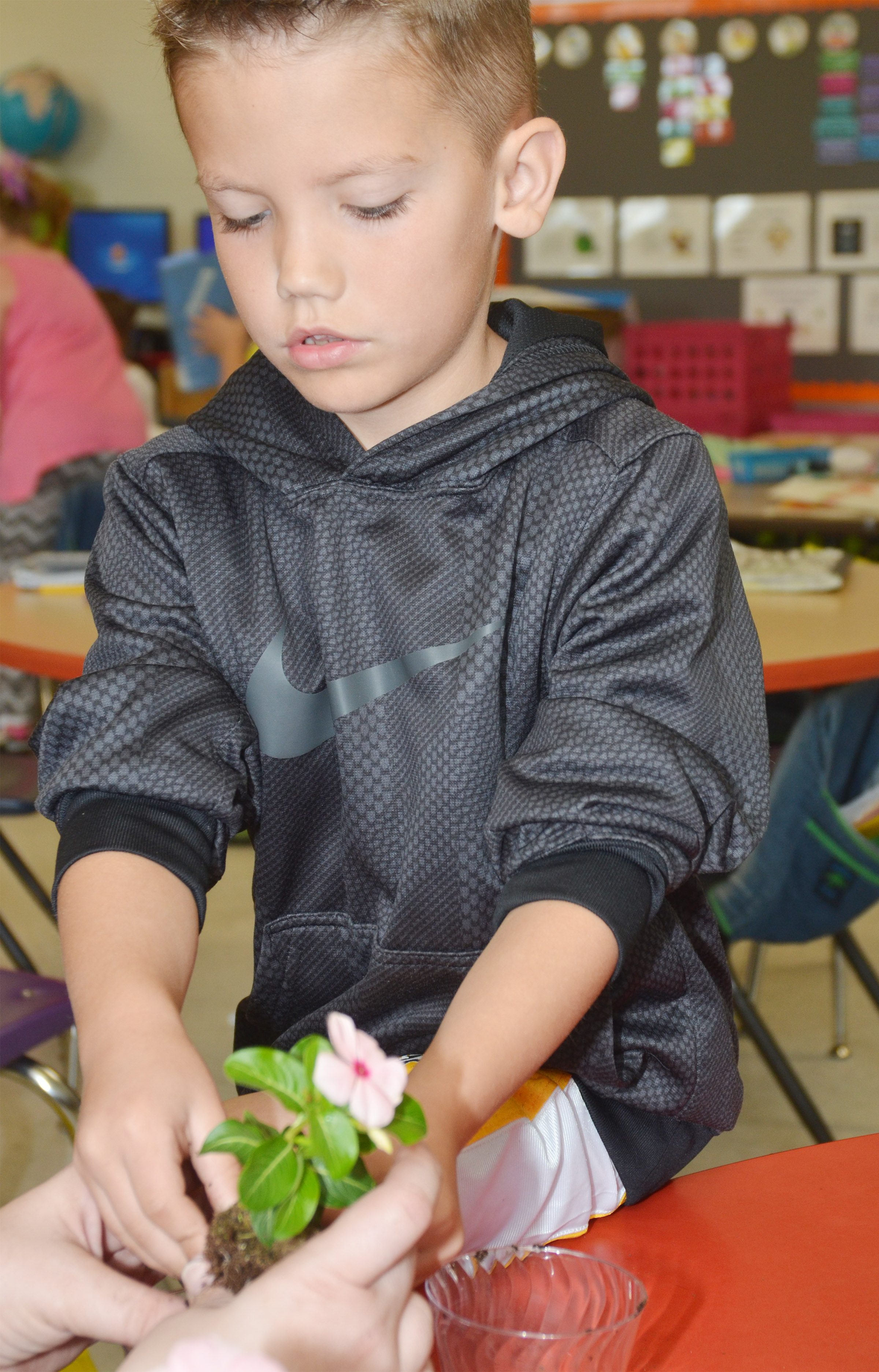CES first-grader Owen Skaggs plants a flower for his mother.