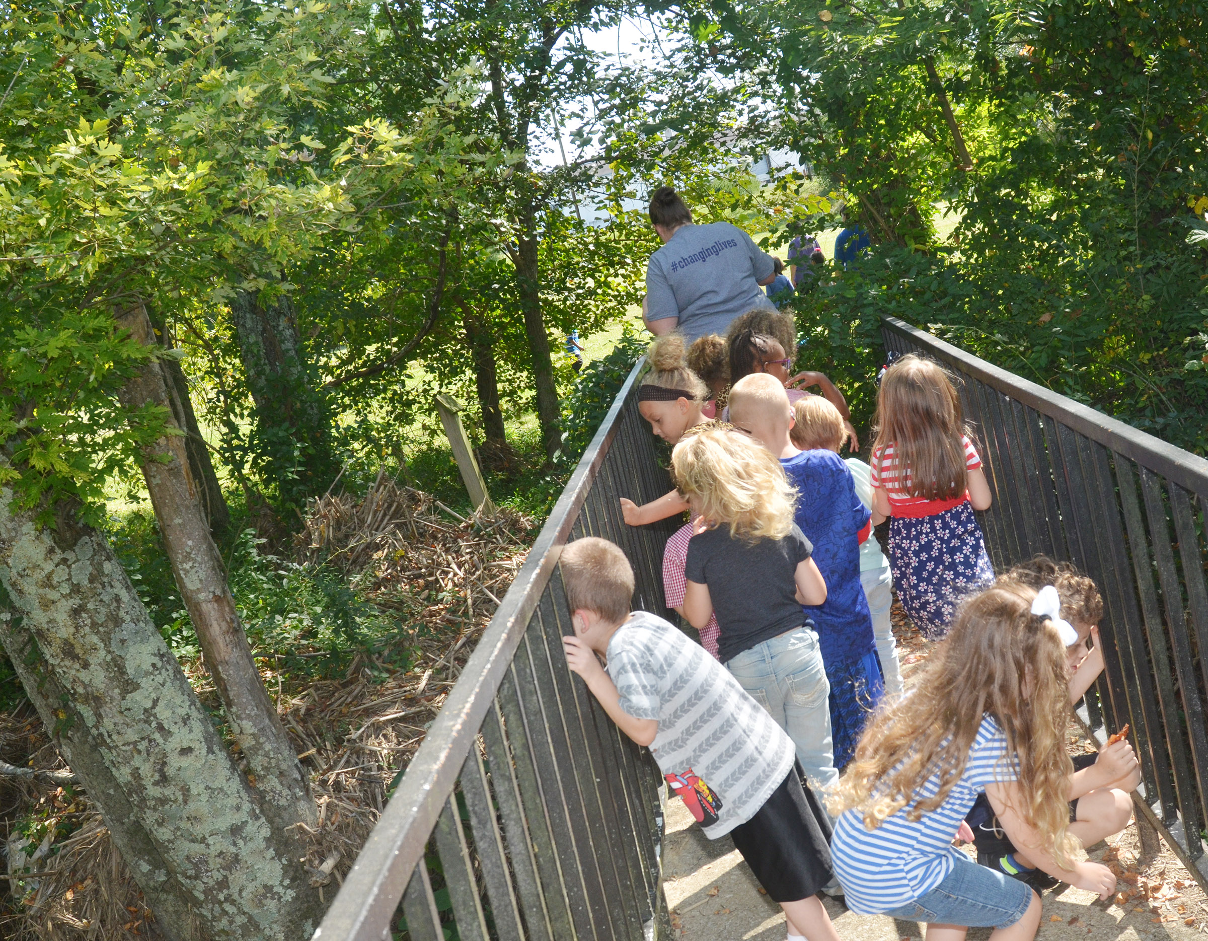 CES preschool teacher Julie Shelton leads her students across a bridge during their nature walk.