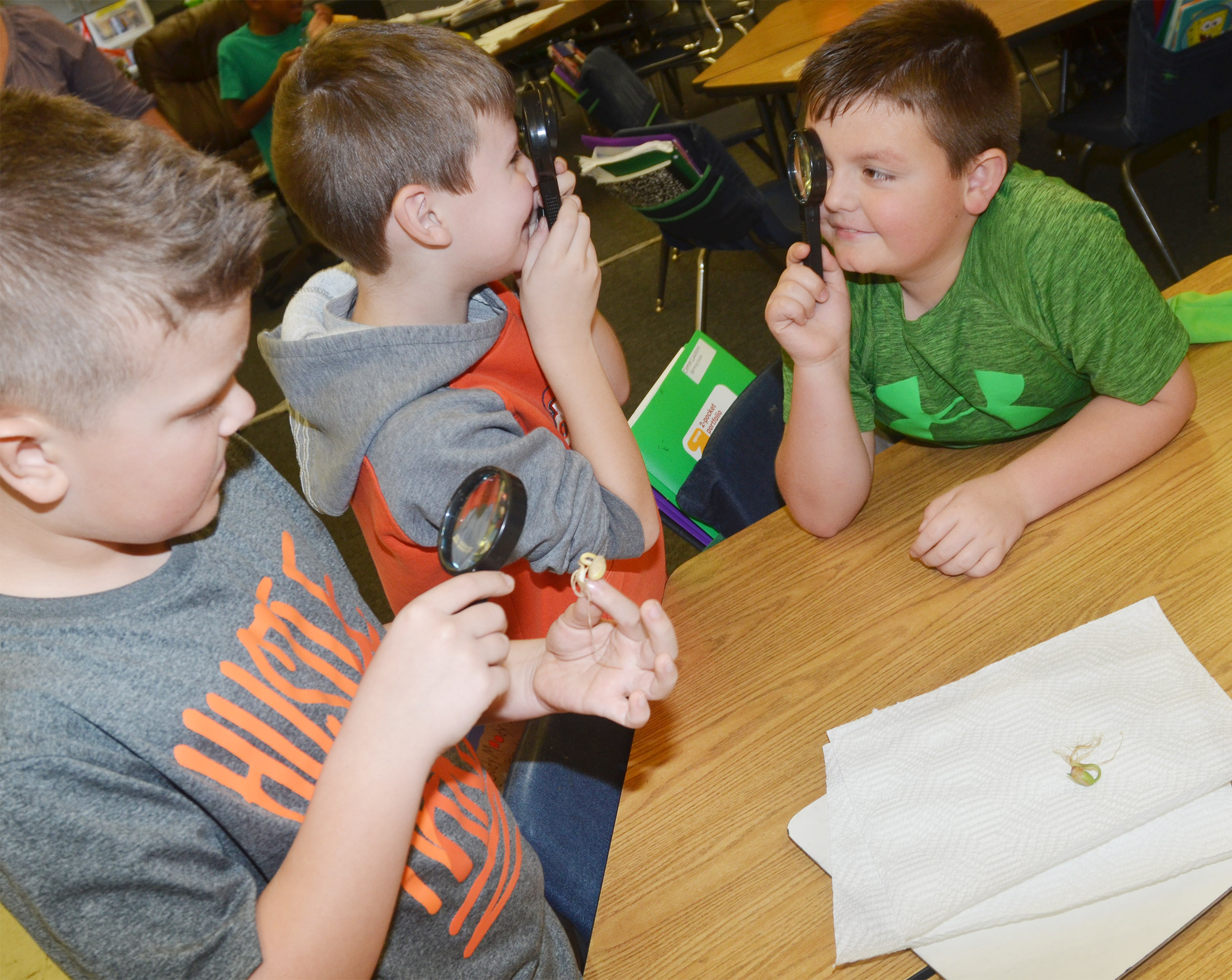 CES second-graders Ryan Tungate, center, and Hayden Maupin look at each other with their magnifying glasses as classmate Cayton Lawhorn gets a look at their bean plant.