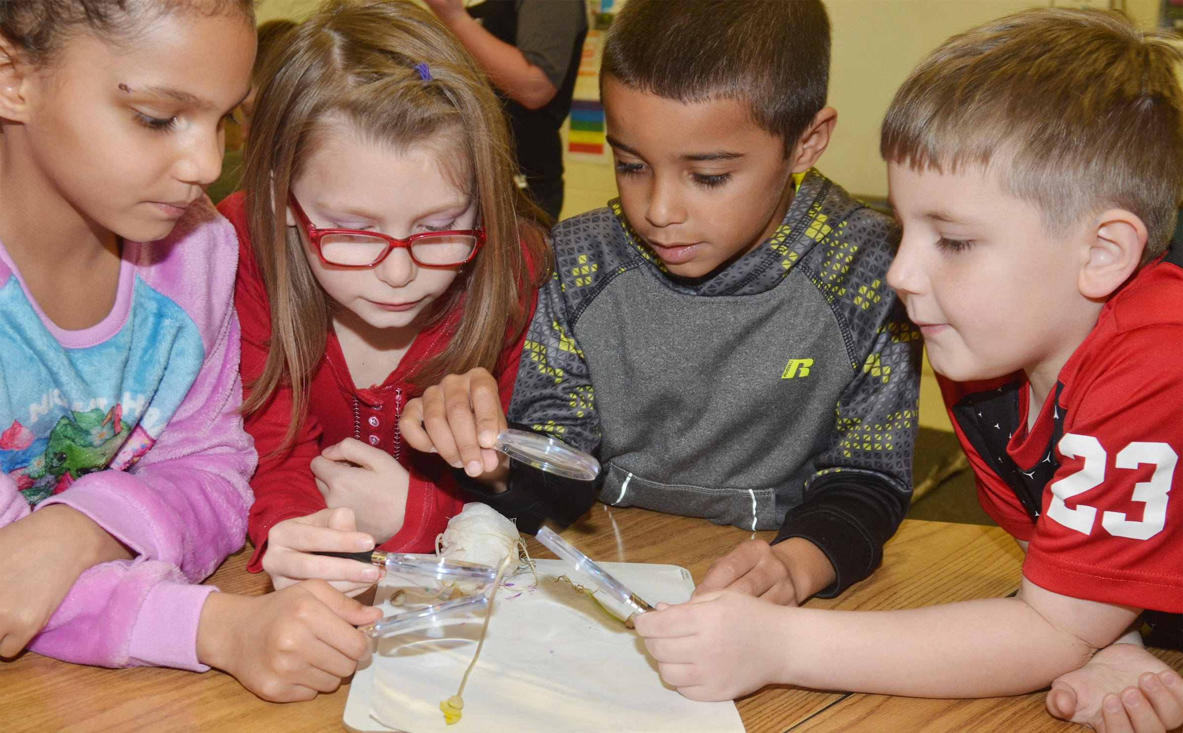 From left, CES second-graders Malia Thompson, Sammantha Wooley, Keylan Strong and Seamus Huber get an up close look at their bean plant.