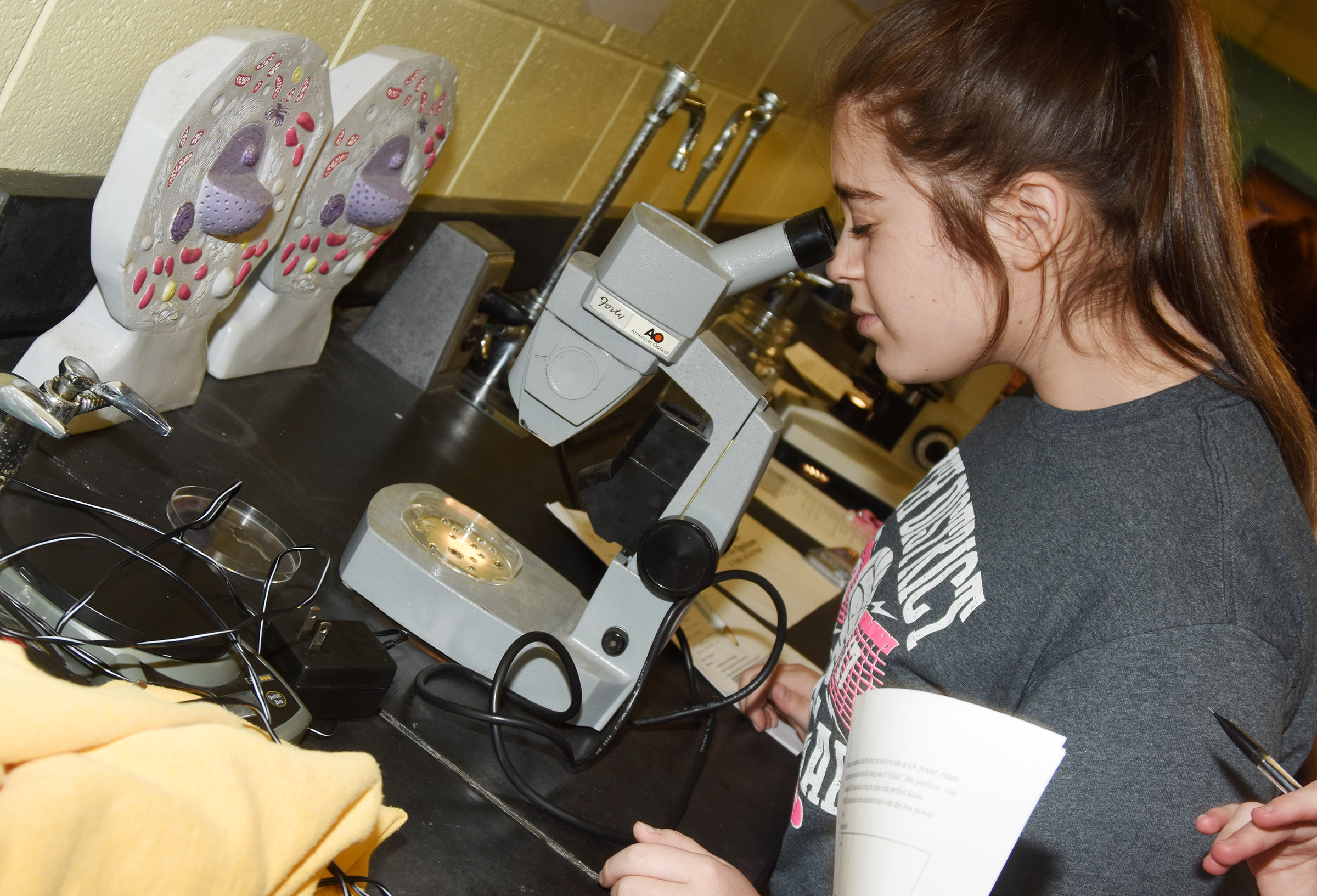 CHS freshman Chloe Garrett looks at pond water under the microscope.