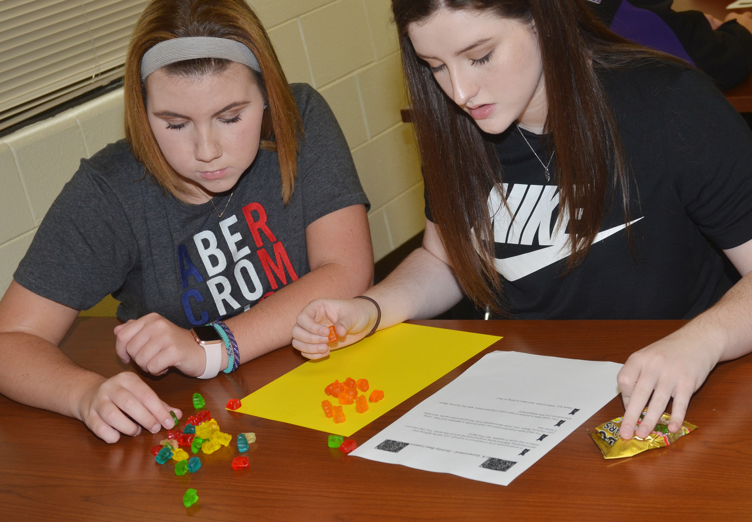 CHS sophomores Lauryn Agathen, at left, and Alli Wilson build their gummy bear government model.