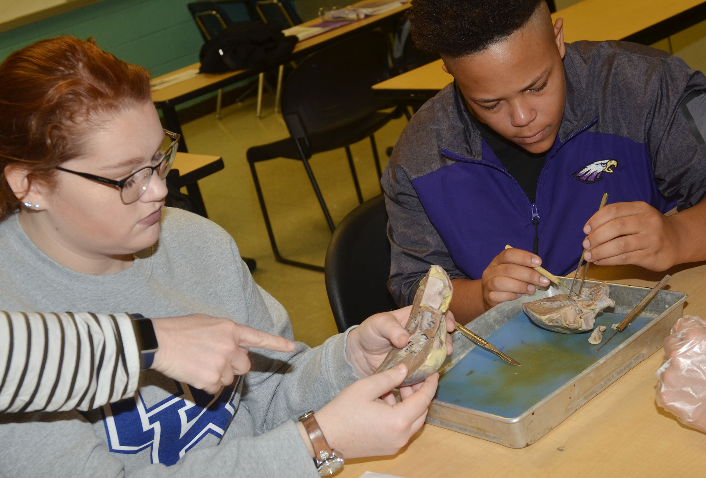 CHS anatomy teacher Dee Doss helps senior Mallory Haley and sophomore Dee Simpson identify the parts of the heart.