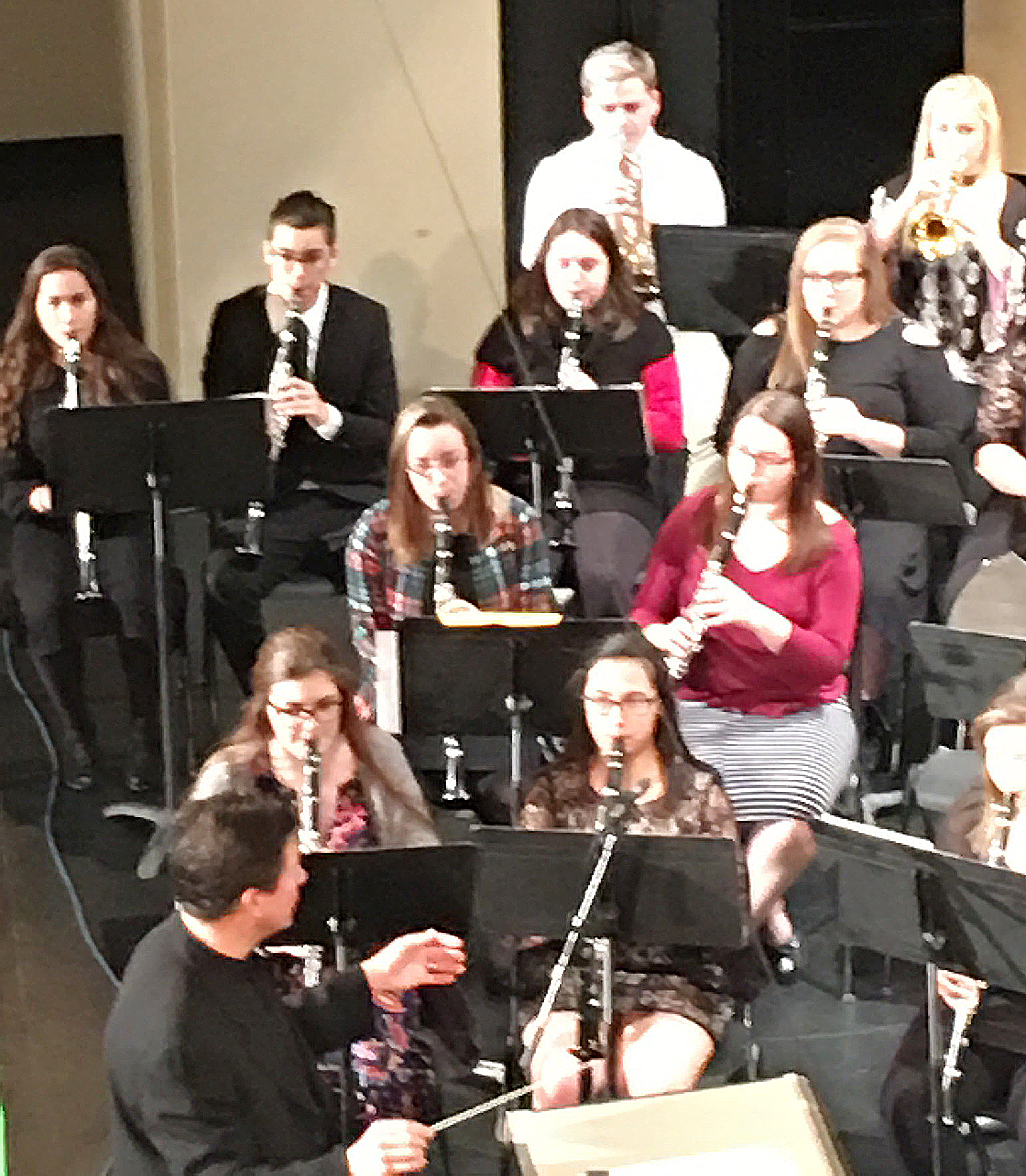 CHS junior Ruby Hatfield, third row, third from left, plays clarinet at the Western Kentucky University Honors Band Clinic.