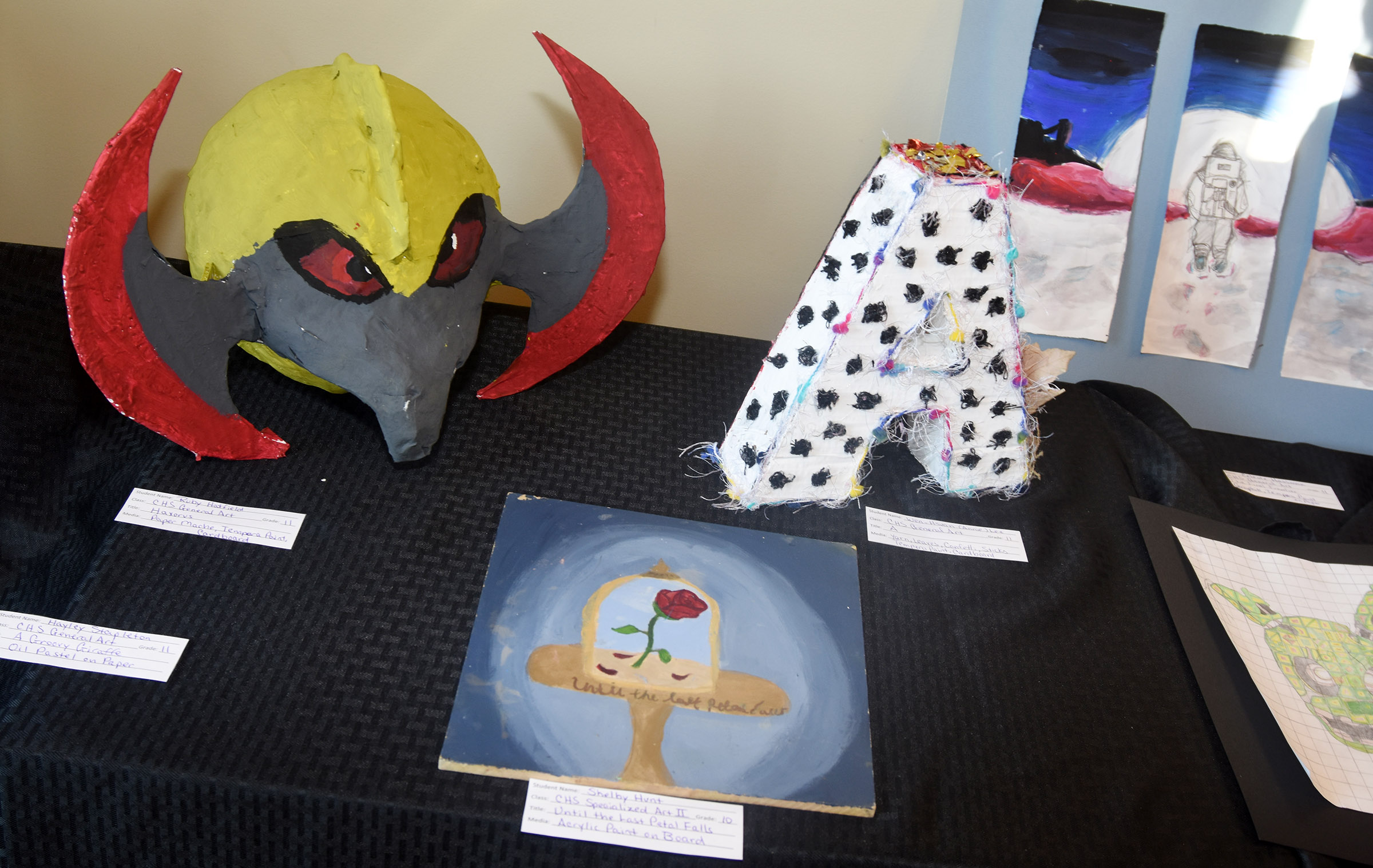 CMS and CHS art students' work is on display at the Taylor County Public Library.