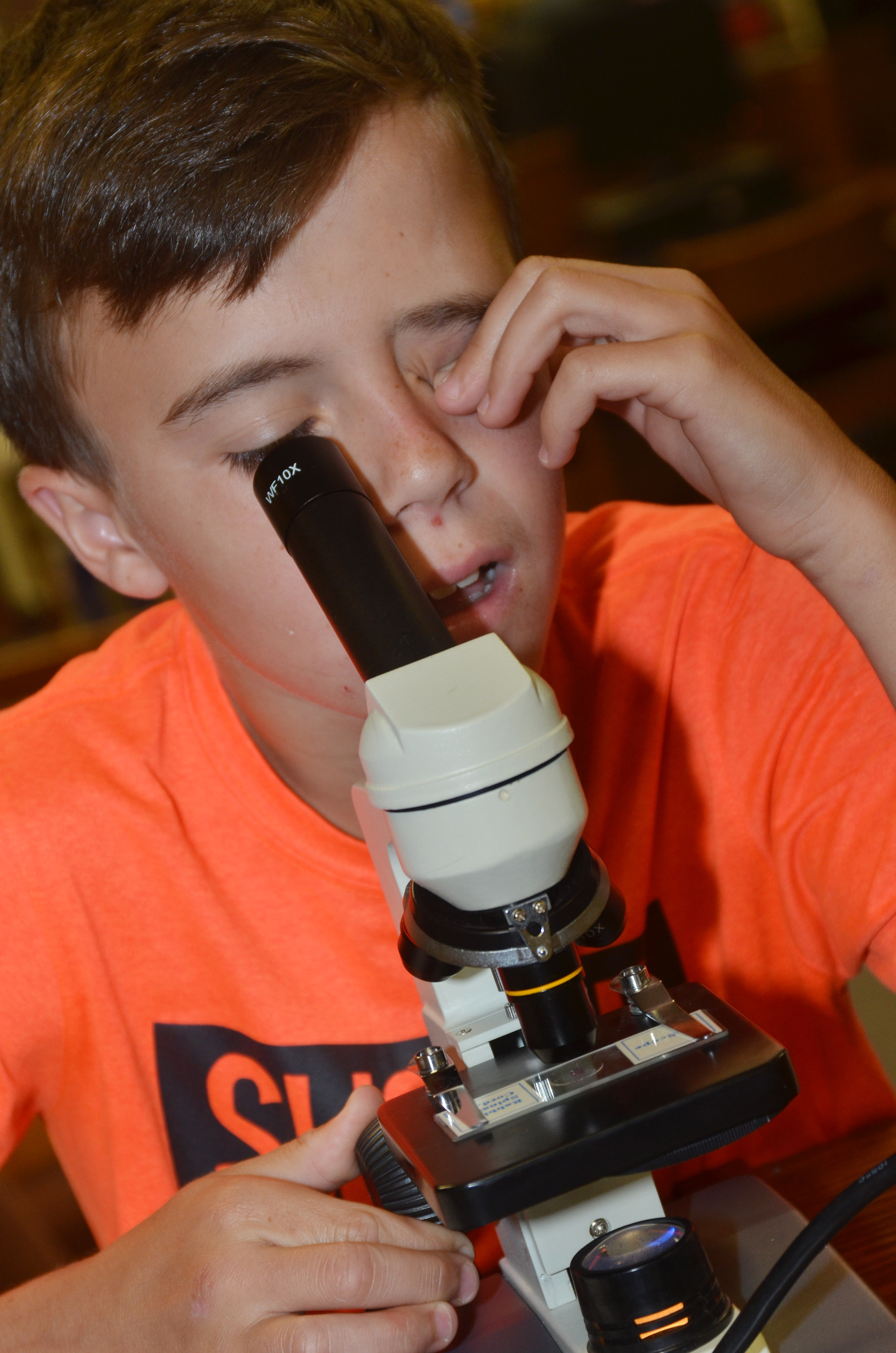 CMS seventh-grader Chase Hord looks at a rabbit's spinal cord under a microscope.